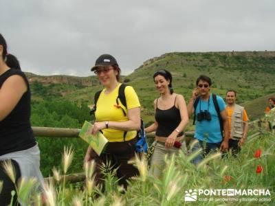 Hoces del Río Duratón - rutas senderismo - Sepúlveda; las majadas cuenca;
